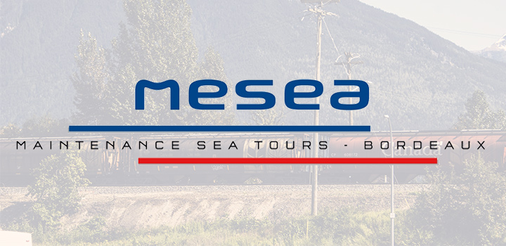 overview-annonce-mesea